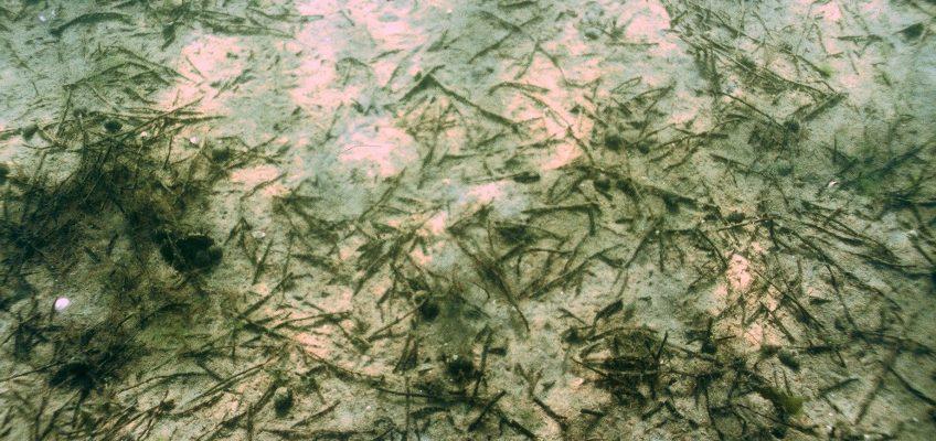 Truslen mod de undersøiske stenalderbopladser