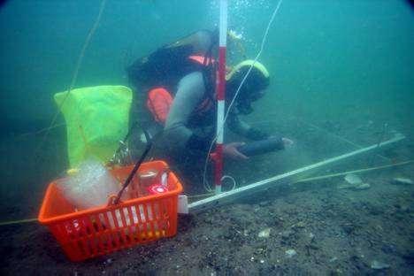 Dykker arbejder i Felt-102
