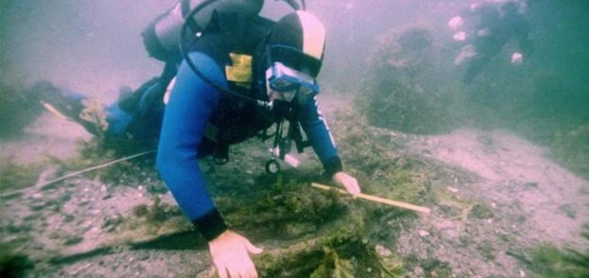 Brug de dykkende amatørarkæologer